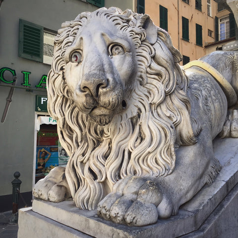 Carved Marble Lion on the Steps of the Cattedrale di San Lorenzo, Genova, Italy (LEO Design)