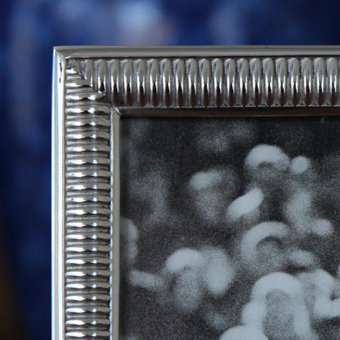 "Cast Pewter Photo Frame (Detail) with ""Heavy Spring"" Border (LEO Design)"