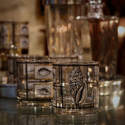 Single Old Fashioned Rocks Glasses with Seashell Collection Decoration (LEO Design)