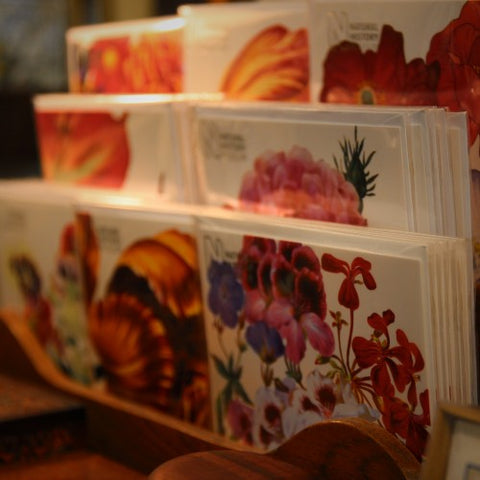British Spring Floral Greeting Cards at LEO Design
