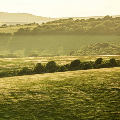The Rolling Hills of Sussex, Southern England (LEO Design)