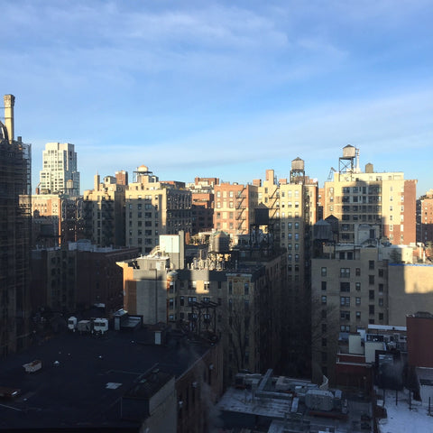 An Upper Westside View Out My Hotel Window (LEO Design)