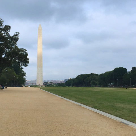Washington Monument as seen from the National Mall (Kimo Jung/LEO Design)