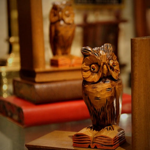 Alpine Carved Wooden Wise Owl Bookends (LEO Design)
