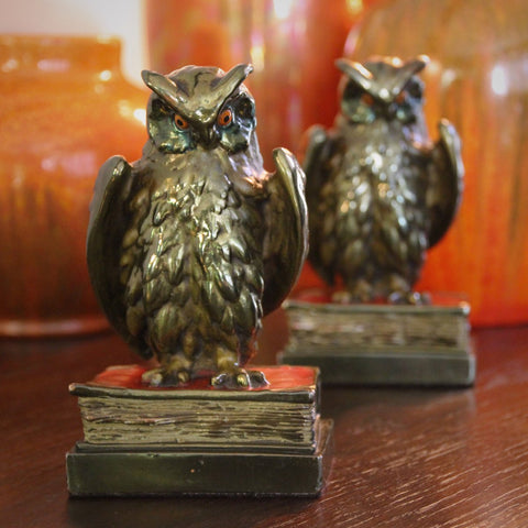 Bronze-Clad & Painted Wise Owl Bookends (LEO Design)