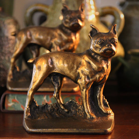 Cast Iron Boston Terrier Bookends with Golden Patina (LEO Design )