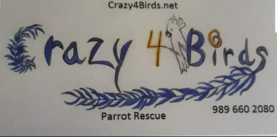 Crazy 4 Birds Rescue