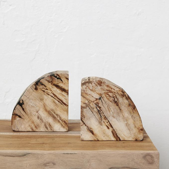 Acadia Petrified Wood Bookends - Winston and Finch