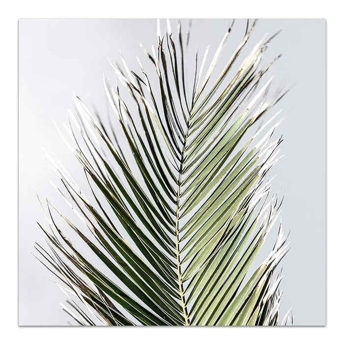 Palm II - Square - Winston and Finch