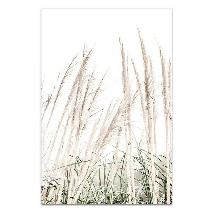 Pampas Grass II - Winston and Finch