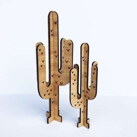 3D Cactus - Set of 2 - Lil Sunshine Collections