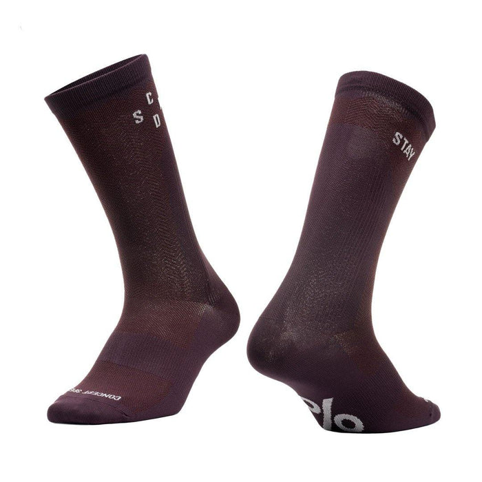 Concept Speed (CSPD) Stay True Socks - Dark Wine