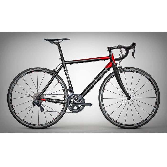 Battaglin Speed Alloy Frameset