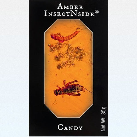 Hotlix Amber InsectNside Candy