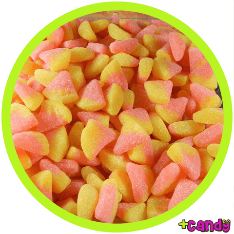 Citrus Slices [500g]