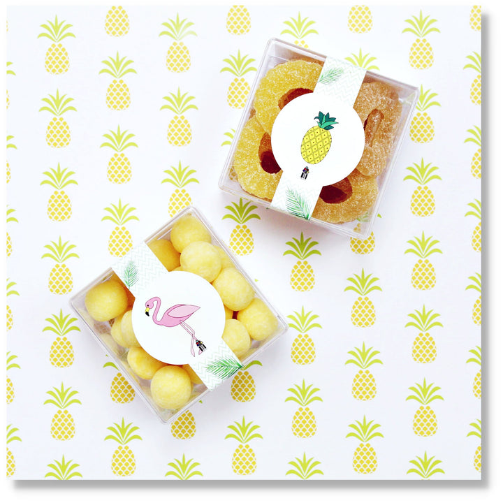 PINEAPPLE & FLAMINGO - 2 CUBES - Candy Fix