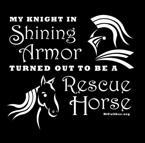 My Knight is a Rescue Horse