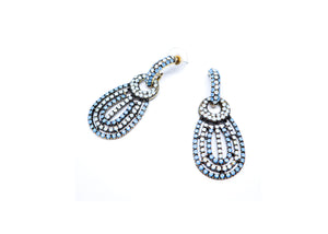 Blue bug Earrings