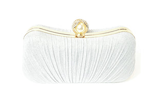 Silver Color Purse