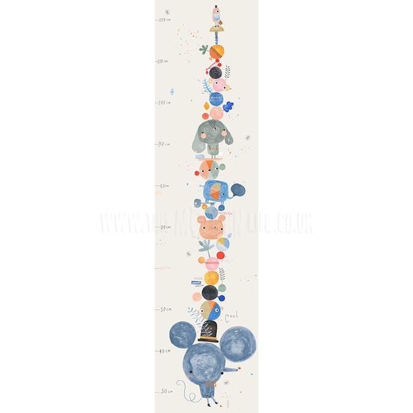 Height Chart . Mouse