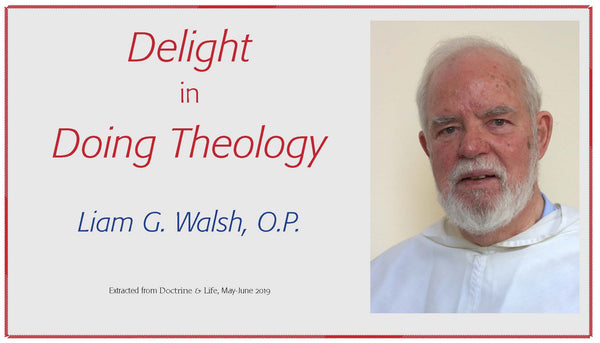 Delight in Doing Theology