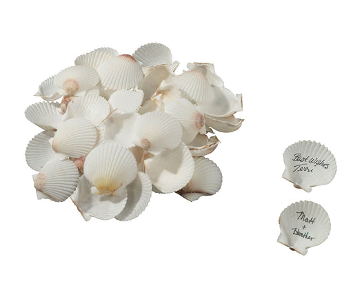 Lillian Rose Coastal Guest Signing Seashells