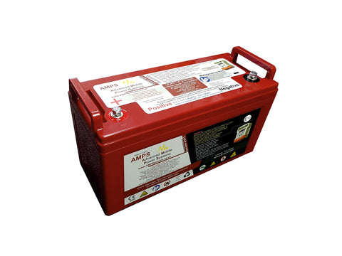 12V 120Ah Lithium Iron Phosphate Battery with BMS and safety shutdown