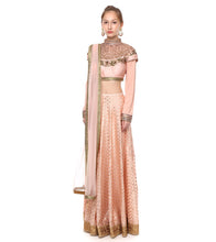Pink Banarasi Chanderi Booti Embroidered Lehenga Set