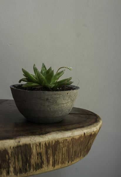 Cement Planter (Grey) - Set of 2