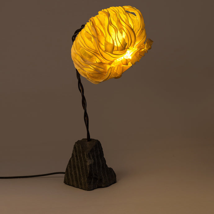 Freefall with Coco Flower Table Lamp
