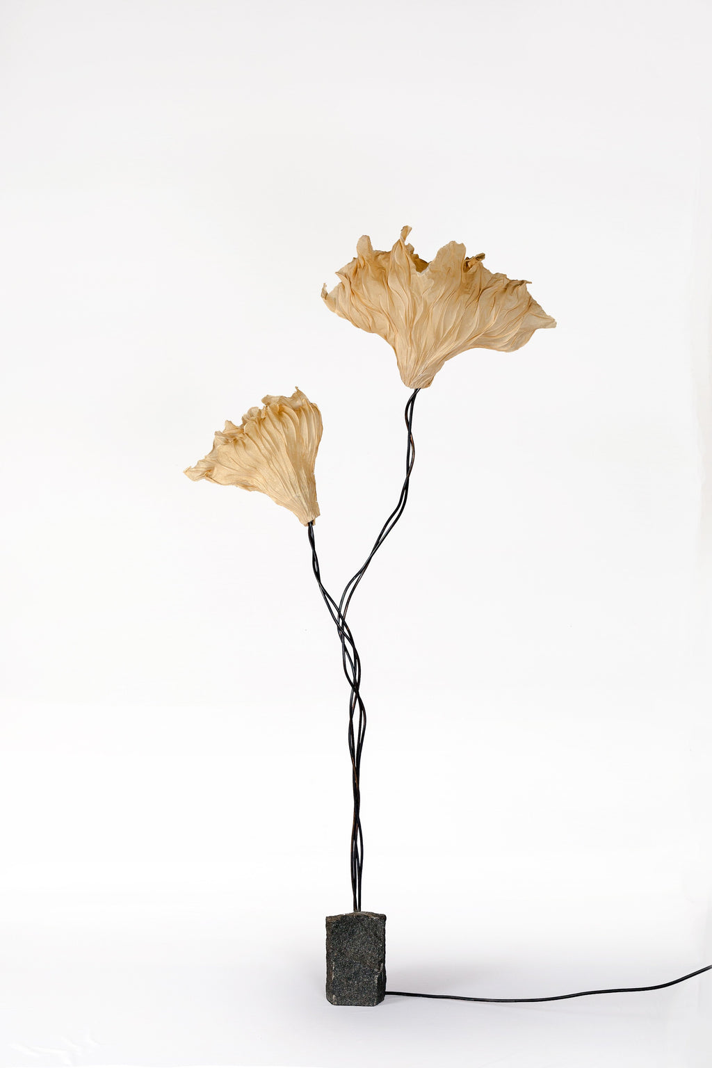 Gingko Floor Lamp