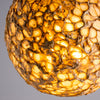 Glowing Core Dandelion Pendant Lamp