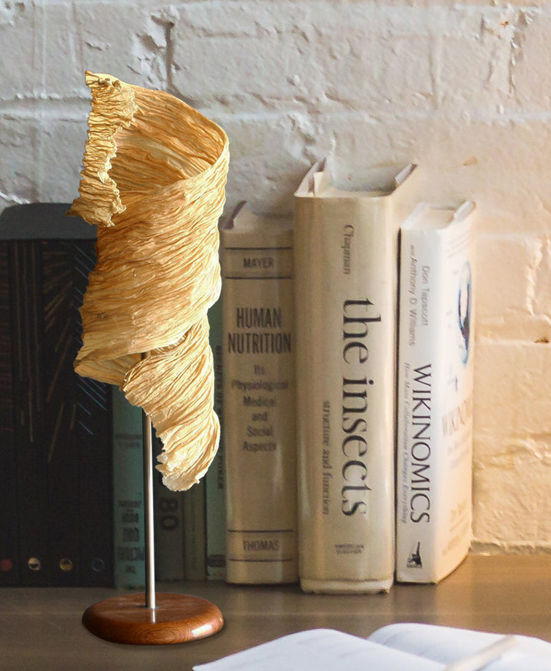 Leaf Curl Table Lamp