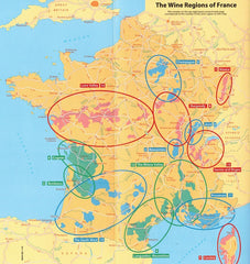 The Wine Regions of France 9782067229556 all regions