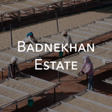 Badnekhan Estate