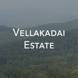 Vellakadai Estate