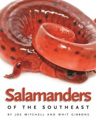 Salamanders of the Southeast (Joe Mitchell, Whit Gibbons)