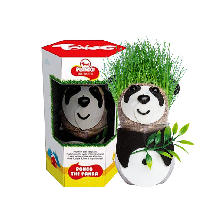 PlanToi - Pongo the Panda