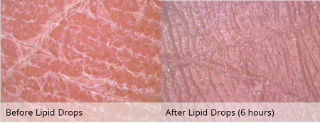 Lipid Drops 30ML Tester - CosMedical Technologies