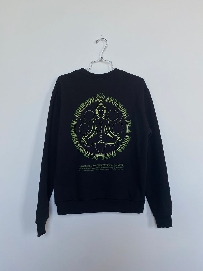 WELLNESS SWEATSHIRT (MEDIUM)