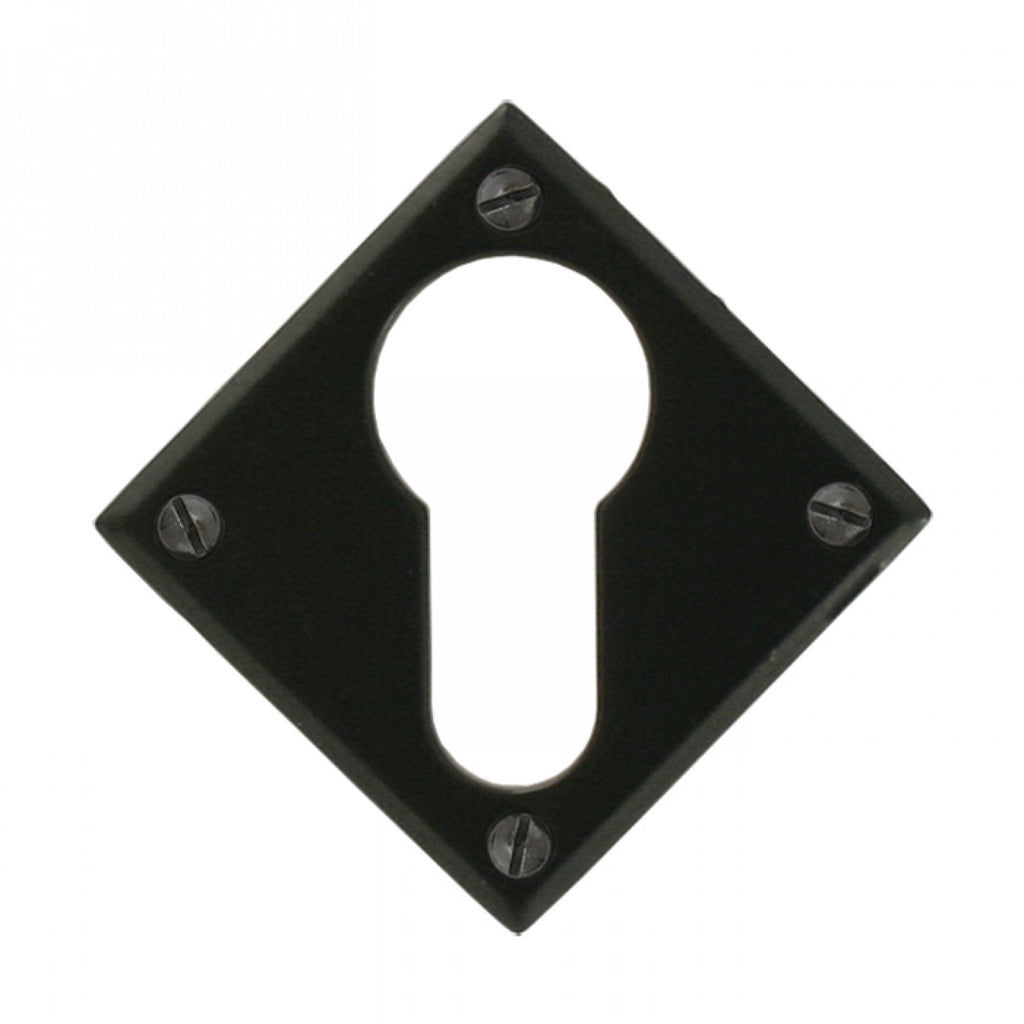 From the Anvil 33236 Black Diamond Euro Escutcheon Key Hole Plate | ATC