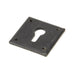 Avon Escutcheon Key Hole Plate  (z)