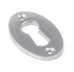 Period Oval Escutcheon  (z)