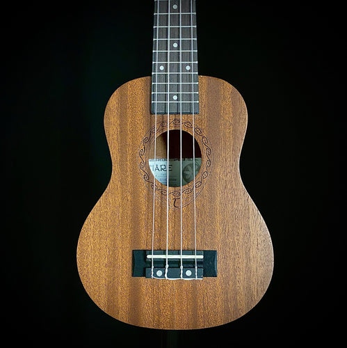 Tanglewood TWT 1