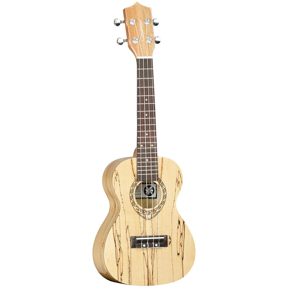 Tanglewood TWT 10 - Leigh Music Co