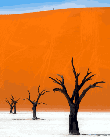 Amazing Places (344) - Namib Desert, Namibia - Van-Go Paint-By-Number Kit
