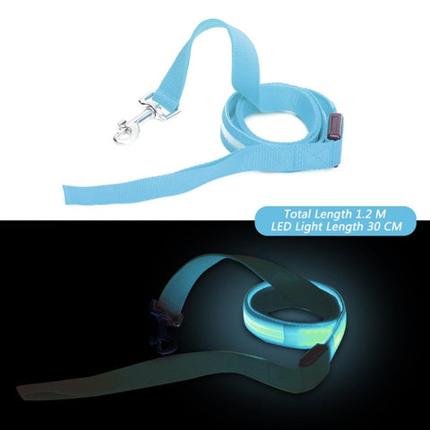 Glow In the Dark Flashing LED Night Safety Pet Leash - 120 cm