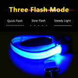 Glow In the Dark Flashing LED Night Safety Pet Leash - 120 cm - MaxStore4U