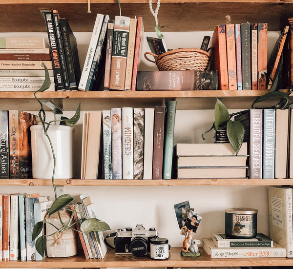bookcase with books & plants