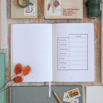Ponderlily bullet journal open to write daily notes